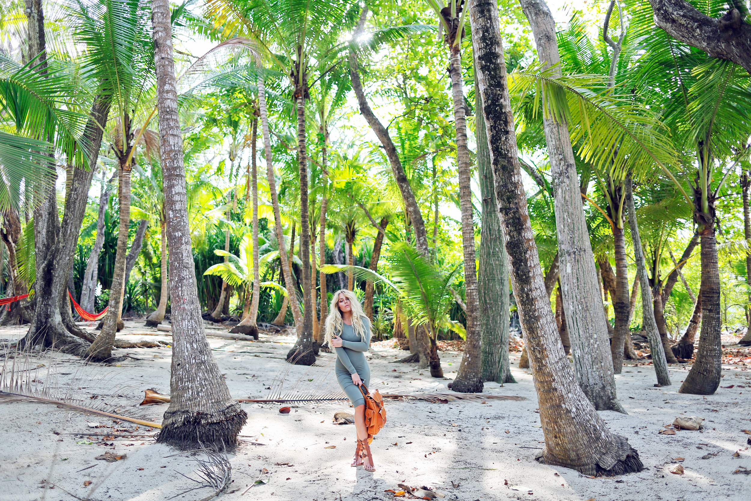 palmtrees_blick7