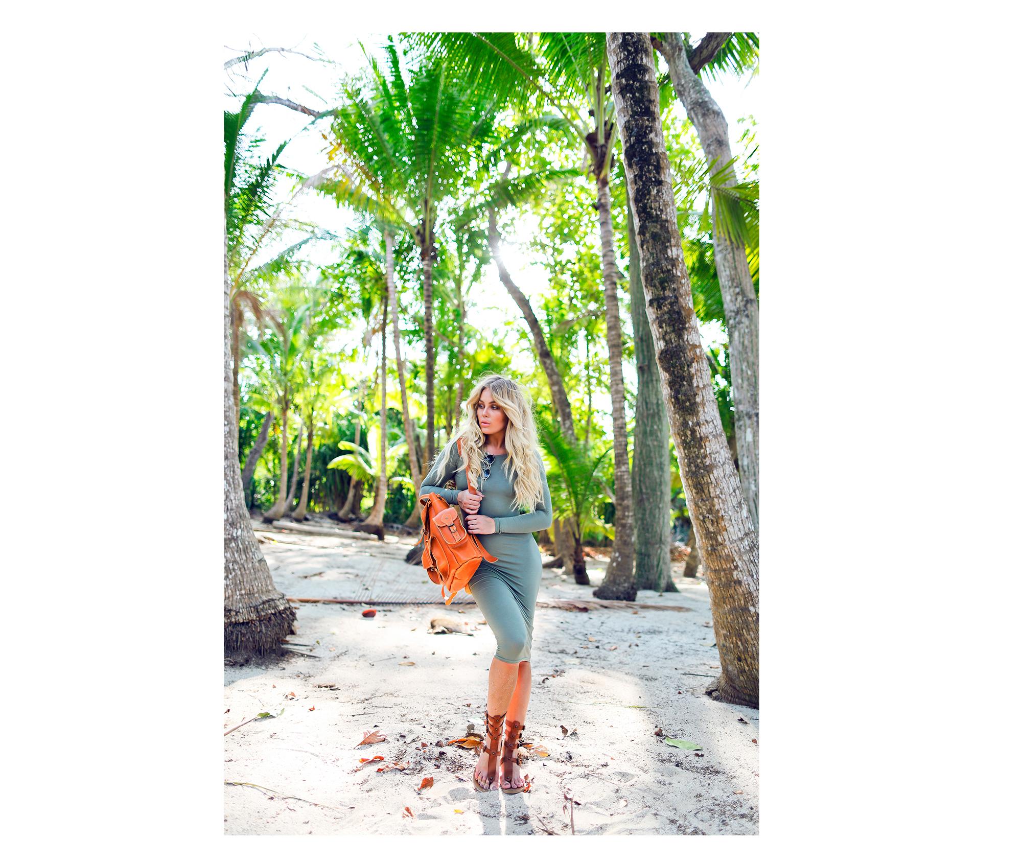 palmtrees_blick9